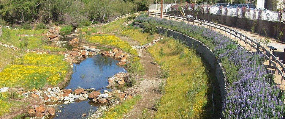 Las Virgenes Creek 4